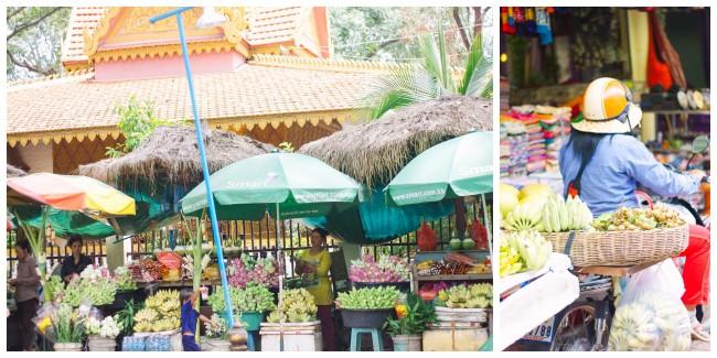 Cambodia Siem Reap City5