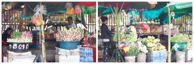 Cambodia Siem Reap City6