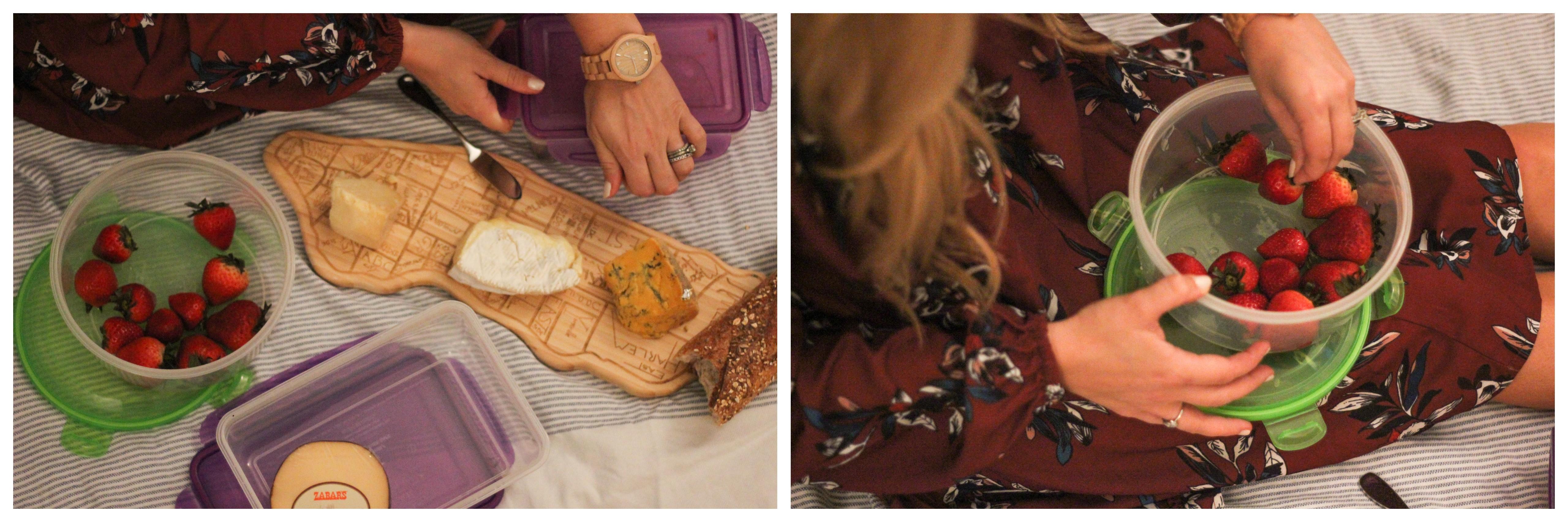 shein-picnic-edited-005