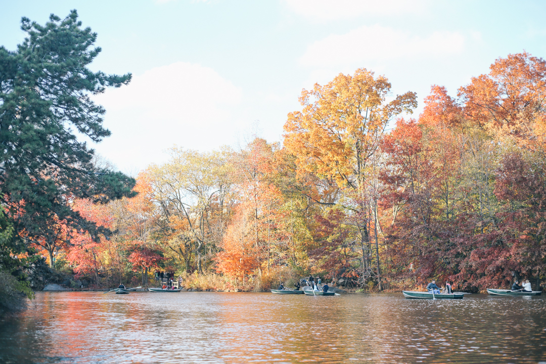 beyond-blessed-row-boats-in-central-park-21