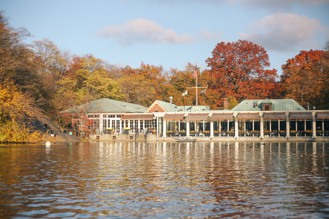 beyond-blessed-row-boats-in-central-park-8